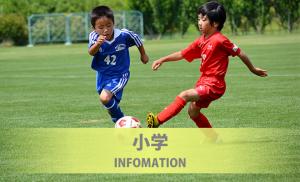 第4回JFA長野県U-11サッカー選手権大会(チビリンピック長野県予選) 開催時期変更のお知らせ