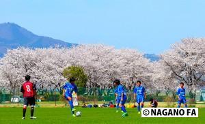 バーモントカップ第26回全日本少年フットサル大会 第22回長野県大会 準決勝・決勝